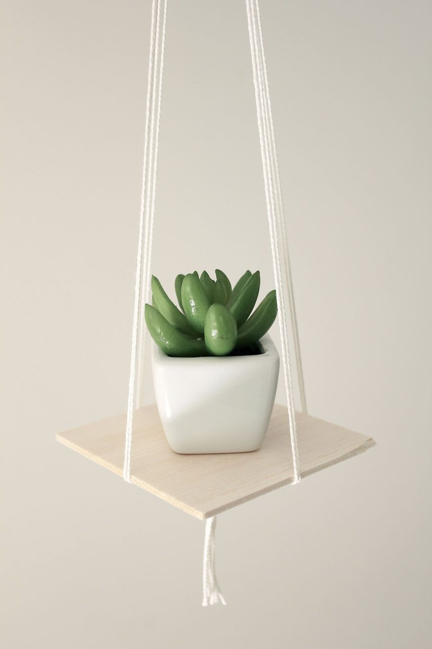 Balsawood easy mini hanging planter with succulent
