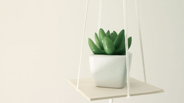Quick DIY- Rope Hanging Planter with balsa wood