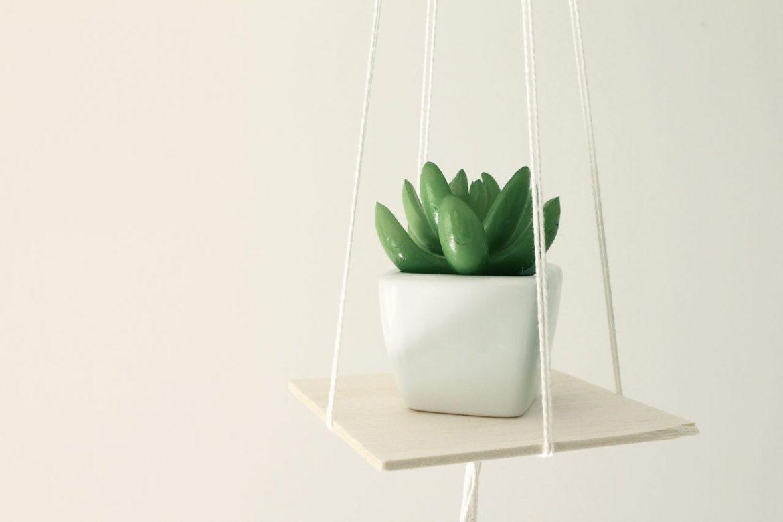 DIY Hanging shelf for plants