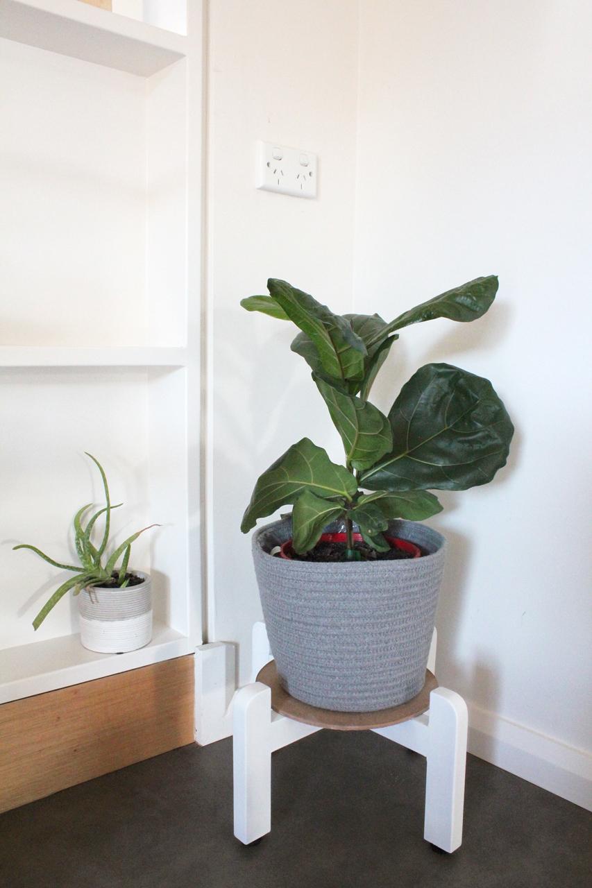Plant Stand Corner