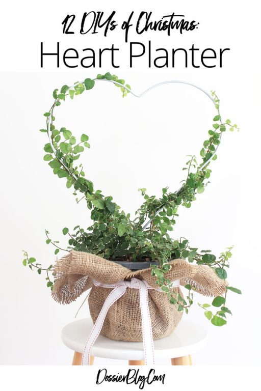 Make a heart planter present | Dossier Blog
