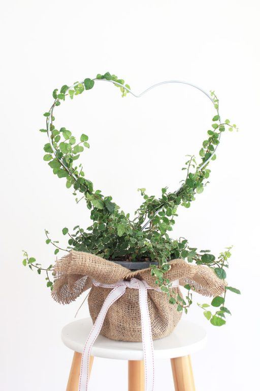 Heart planter gift - 12 DIYs of Christmas | Dossier Blog