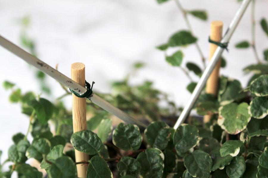 Heart Planter Present - attach heart with wire | Dossier Blog