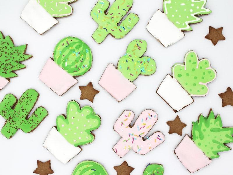 12 DIYs of Christmas #6: Gingerbread Cactus & Succulents2 min read