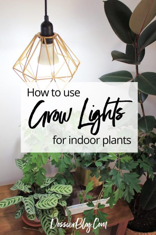 Guide to the best LED grow lights | Dossier Blog