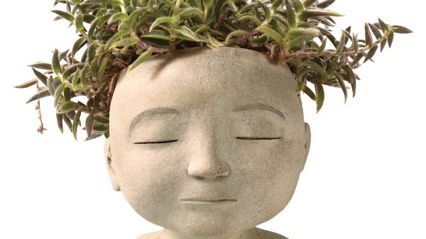 Head of a man or woman planter is perfect to choose your own plant hairstyle with | Dossier Blog