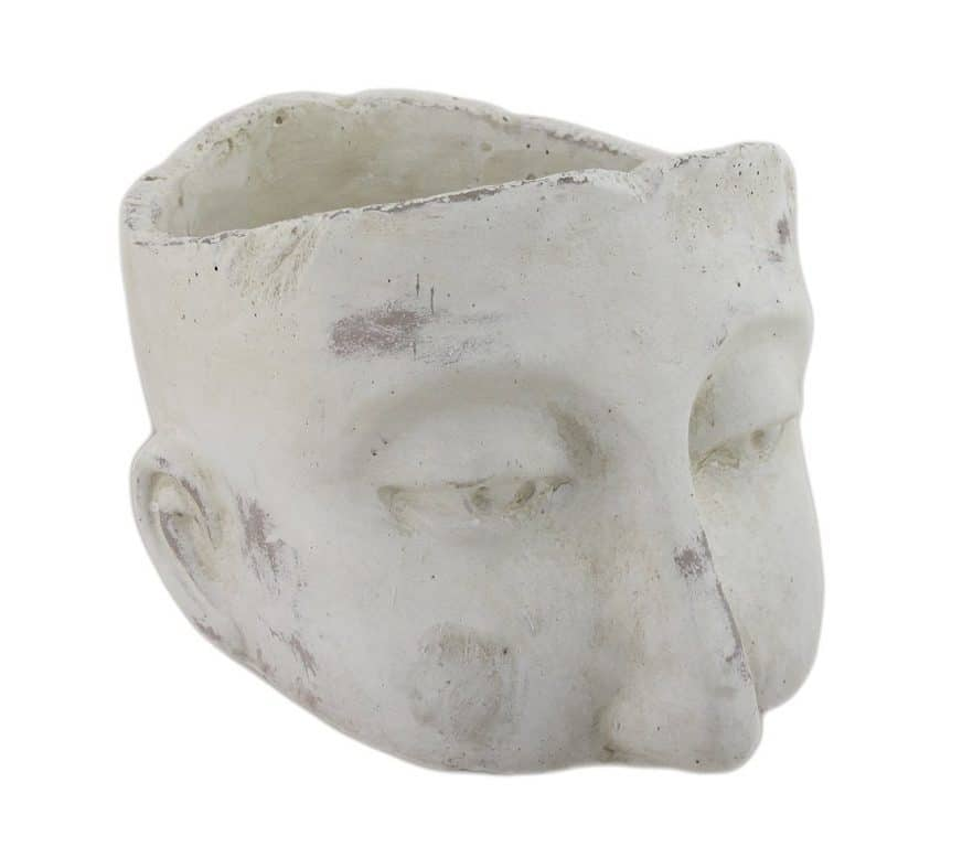This sculptural head planter would look great with an Aloe Vera   Dossier Blog