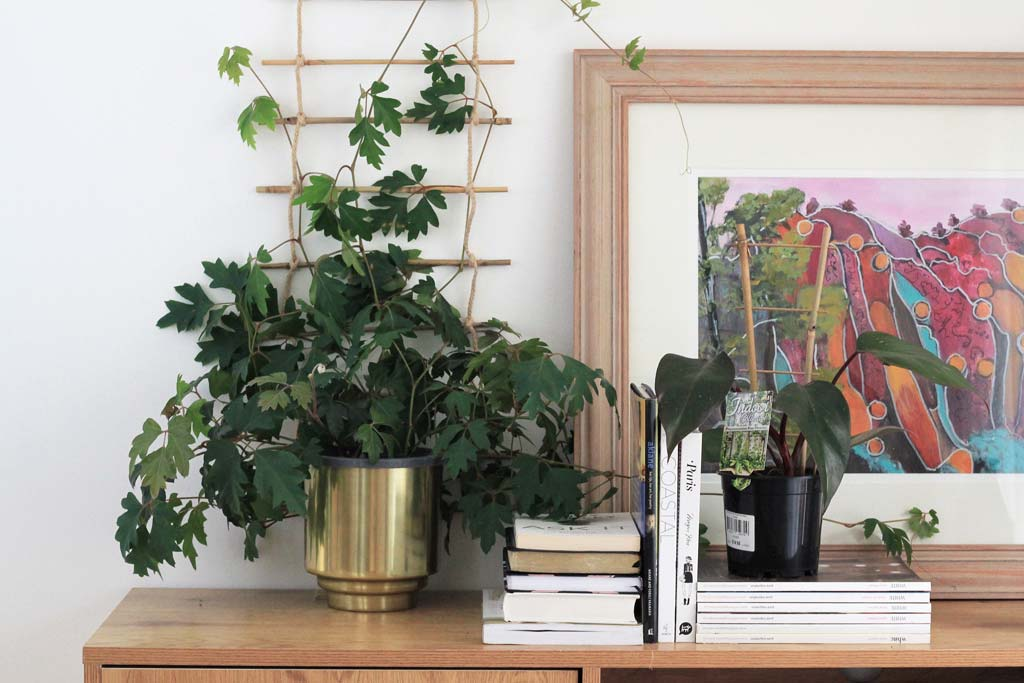 Ivy, books and paintings on sideboard | Dossier Blog