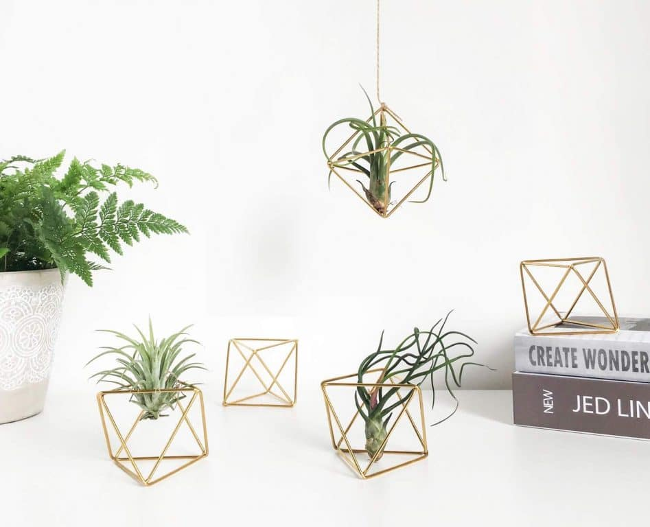 Geometric plant holder | Dossier Blog
