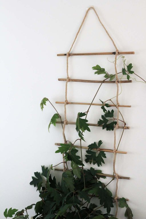 Use rope and bamboo to give your plants something to climb on | Dossier Blog
