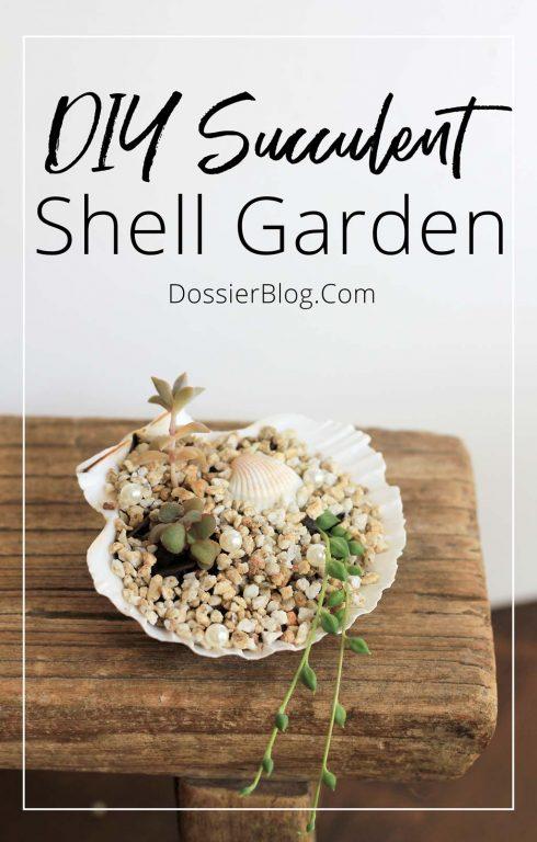 DIY Succulent Shell Garden | Dossier Blog