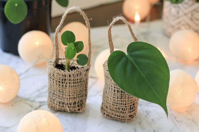 12 DIYs of Christmas: Propagation Gift Bags | Dossier Blog