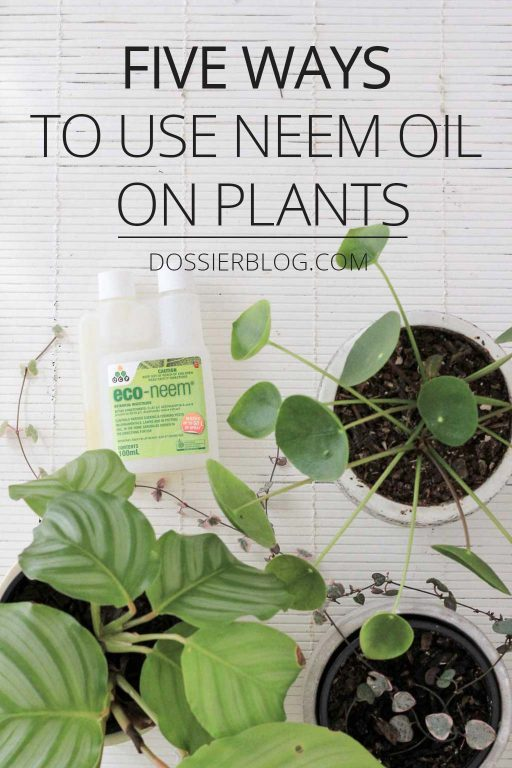 Five Ways to Use Neem Oil on Plants | Dossier Blog