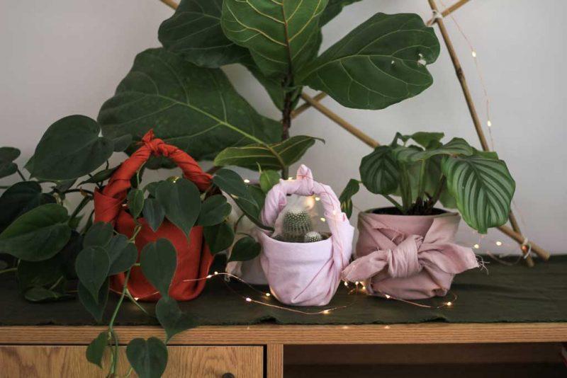 12 DIYs of Christmas: Furoshiki plant gifts | Dossier BLog