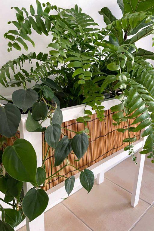 Complete DIY planter for indoors | Dossier Blog